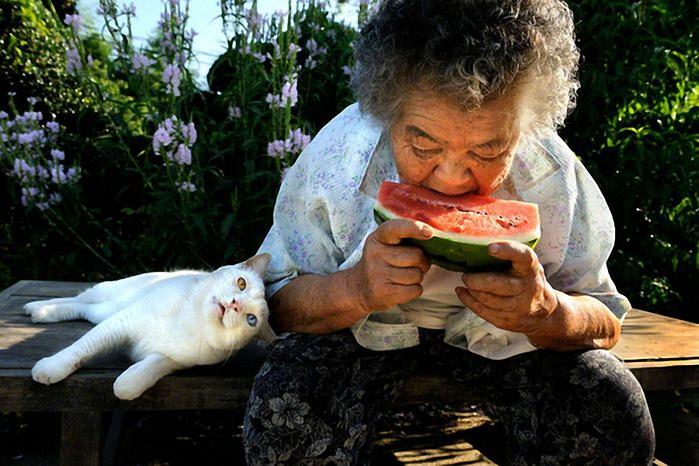 бабушка и кошка 14 (700x466, 261Kb)