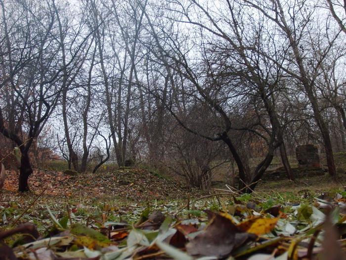 park (700x525, 163Kb)