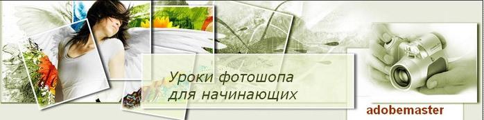 2012-11-19_120345 (700x174, 42Kb)