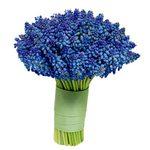 Превью winter06_flowers10a (400x400, 31Kb)