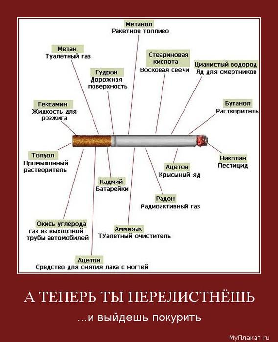 1567-a_teperi_ty_perelistneshi_i_vyideshi_pokuriti (568x700, 73Kb)