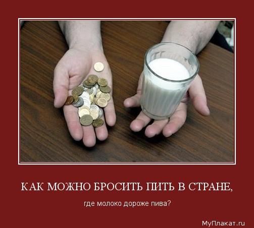 1577-kak_mojno_brositi_piti_v_strane_gde_moloko_doroje_piva (503x453, 48Kb)