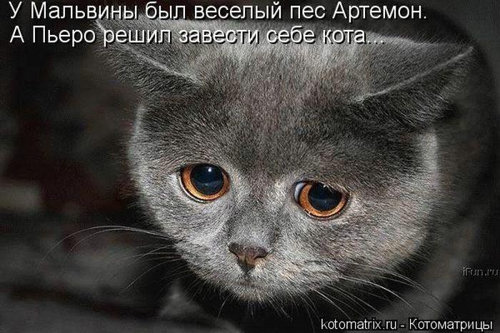 kotomatrix_46 (700x467, 77Kb)