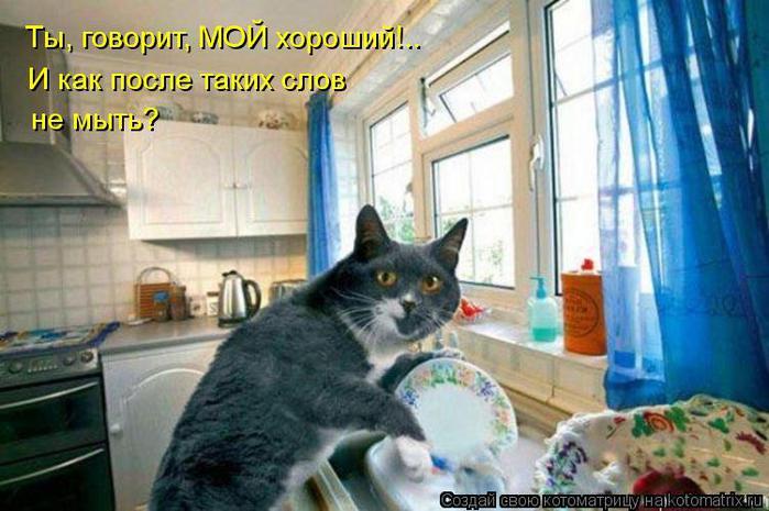 kotomatritsa_na (700x465, 56Kb)