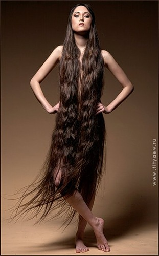 Волосы дыбом ставит 4 буквы - 3555