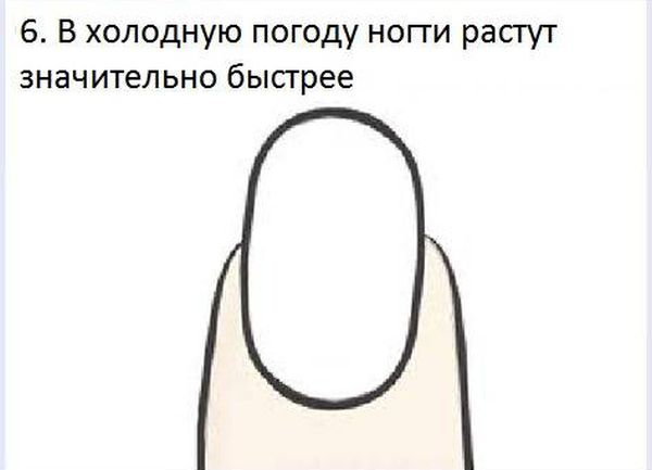 fakt_060 (600x433, 20Kb)