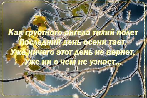 4195666_011 (500x334, 117Kb)