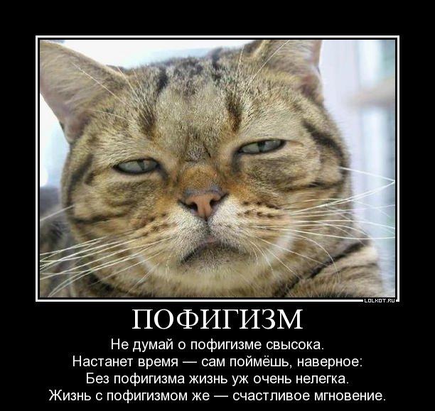 http://img0.liveinternet.ru/images/attach/c/7/94/444/94444336_large_pofigizm_1345635428.jpg