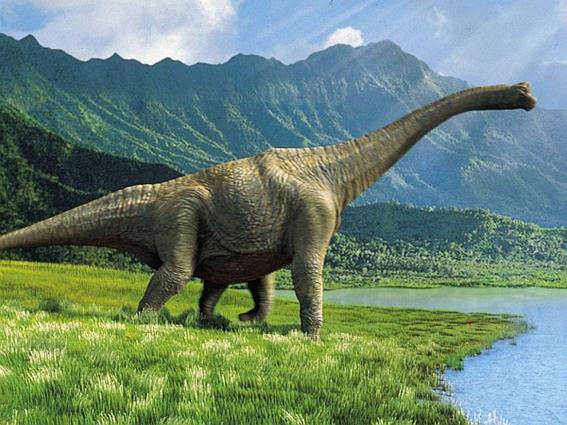 6 странных животных, открытых в музеях