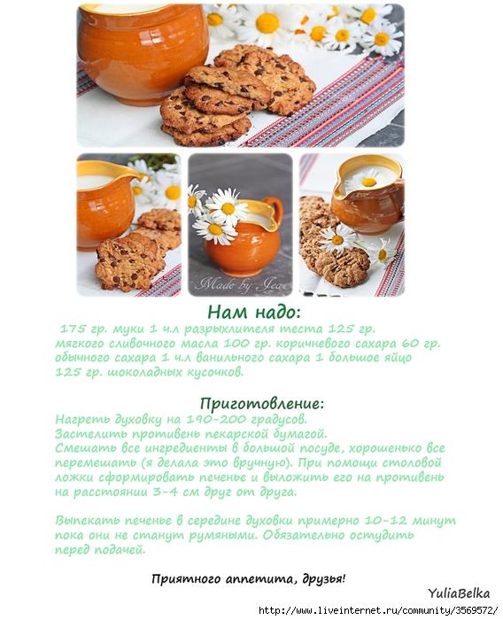 Печенье с кусочками шоколада (568x700, 261Kb)