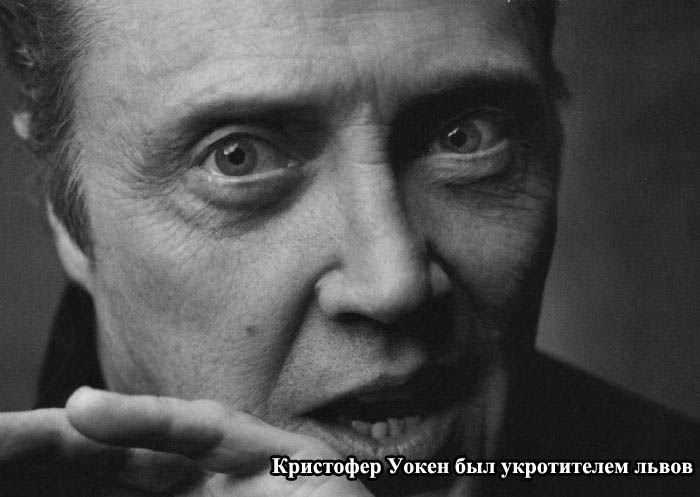 chem_zanimalis_znamenitosti_do_obretenija_populjarnosti_8_foto_1 (700x497, 46Kb)