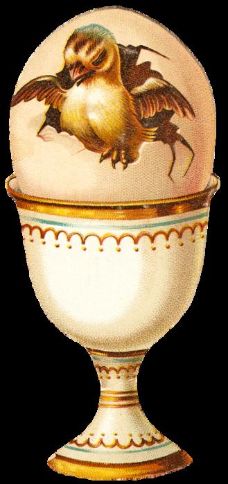EggCupChick1 (329x700, 343Kb)