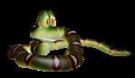 Превью Змеи_3D_на_прозрачном_слое (10) (500x289, 96Kb)