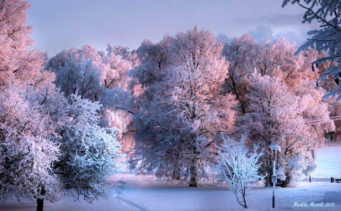 Зима красивая 2 700x434 95kb