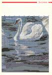 Превью лебеди и лунная дорожка.4jpg (347x500, 130Kb)