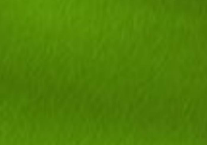полянка  (700x492, 55Kb)
