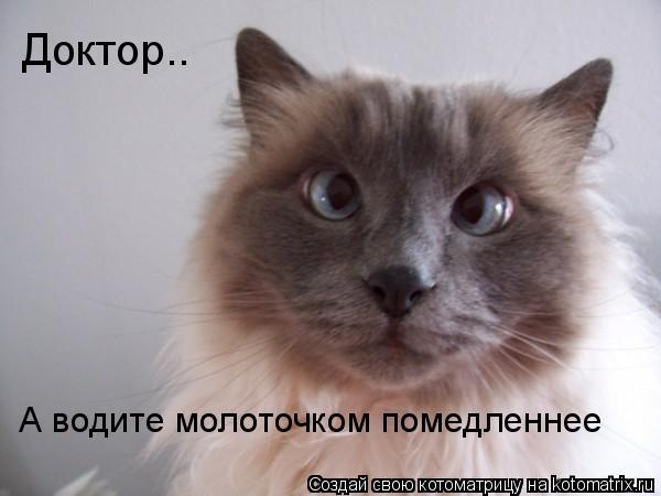 kotomatrix_20 (600x450, 30Kb)