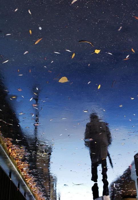 rain6 (484x700, 100Kb)