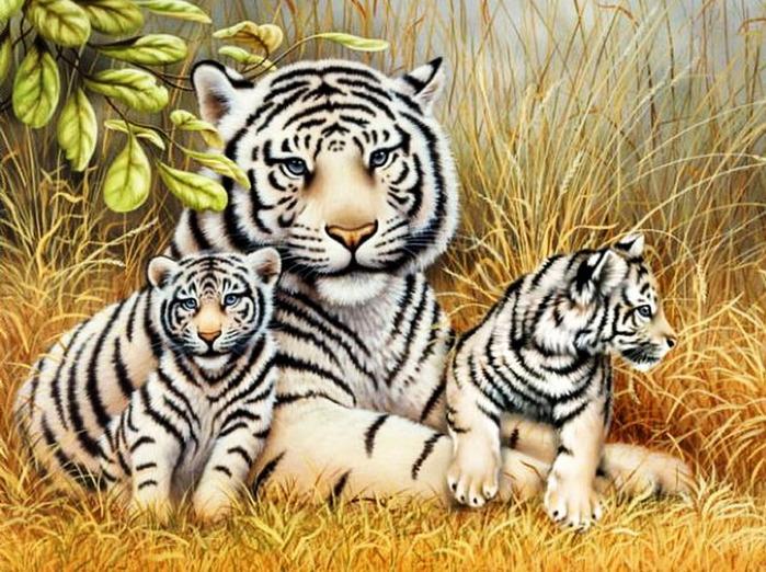 Купила вышивку бенгальский тигр.  В пару ему хочется вышить тигрицу с тигрятами.  Помогите найти схемы.