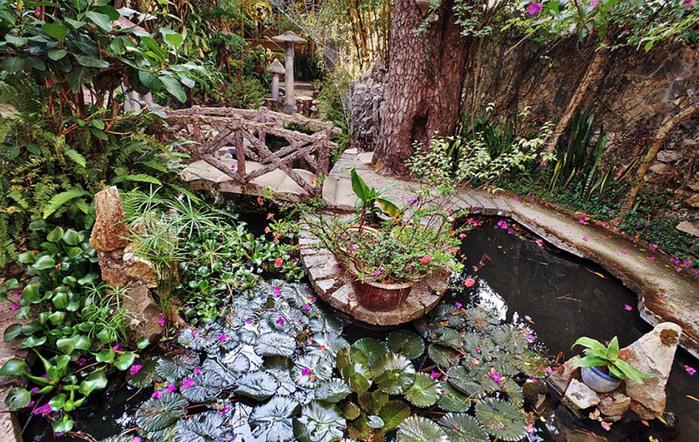 35-сад перед домом Hang Nga (700x442, 188Kb)