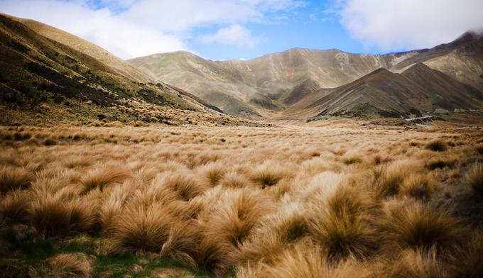 новая зеландия фото 7 (680x392, 291Kb)