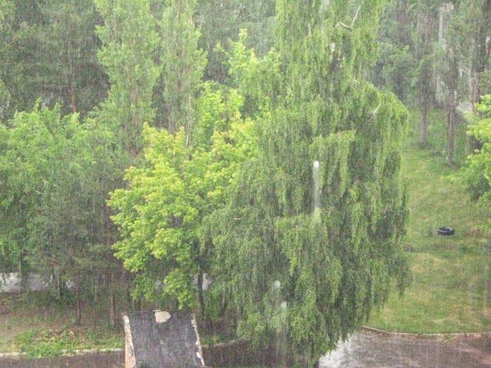 Сезон Дождей 011 (700x525, 512Kb)