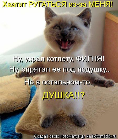 kotomatritsa_HD (450x530, 45Kb)