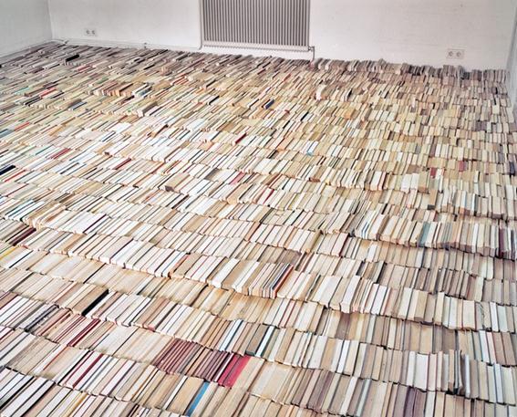 Томас Энгартнер. Инсталляция из гнезда и 8 тысяч книг