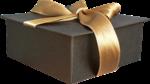 Превью Подарочные_коробки_на_прозрачном_слое (24) (500x280, 190Kb)