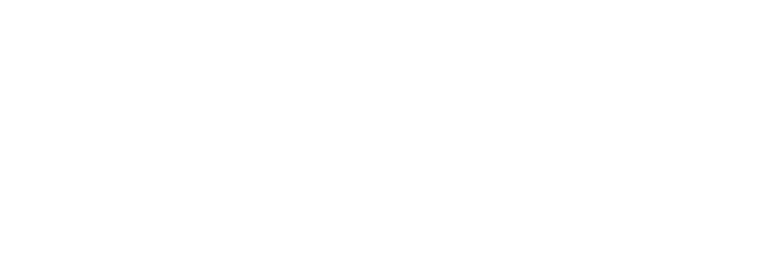 FlyPixelSt_WinterBliss_el (59) (700x253, 39Kb)