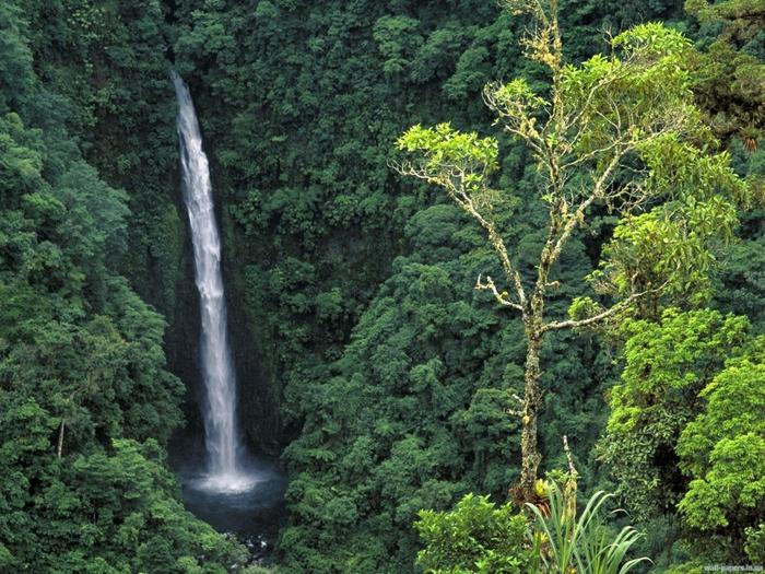 Angel Falls (a k a  Congo Falls), Cordillera Central, Costa Rica (700x525, 377Kb)