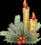 Превью Новогодние_свечи_на_прозрачном_слое (68) (456x500, 293Kb)