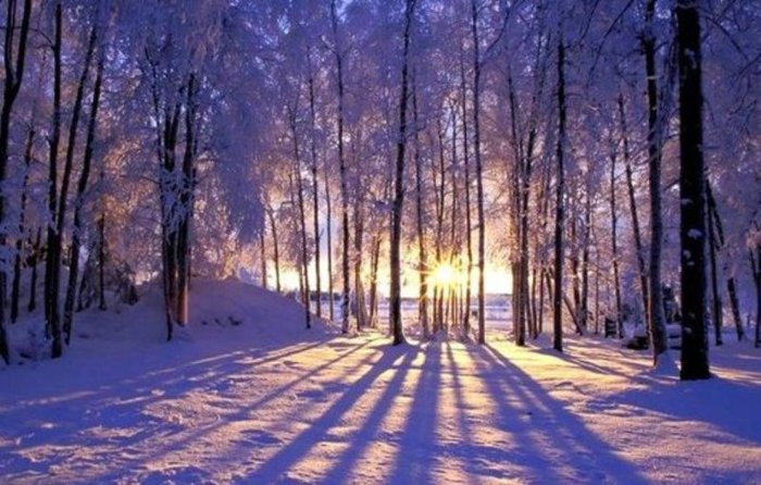 Оригинал схемы вышивки зимний пейзаж