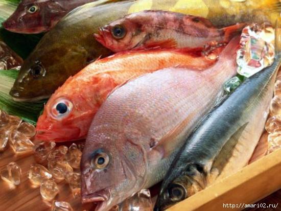 рыба (550x413, 120Kb)