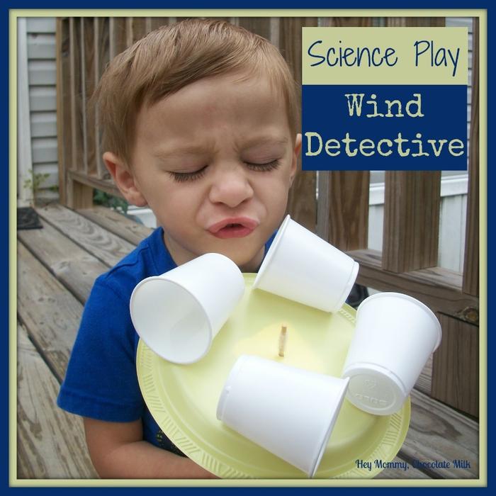 wind detective logo (700x700, 300Kb)
