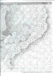Превью лилии на кружевах 004 (508x700, 298Kb)