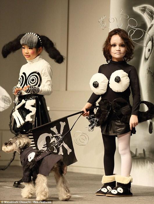 конкурс детской моды франкенвини фото 1 (530x700, 95Kb)