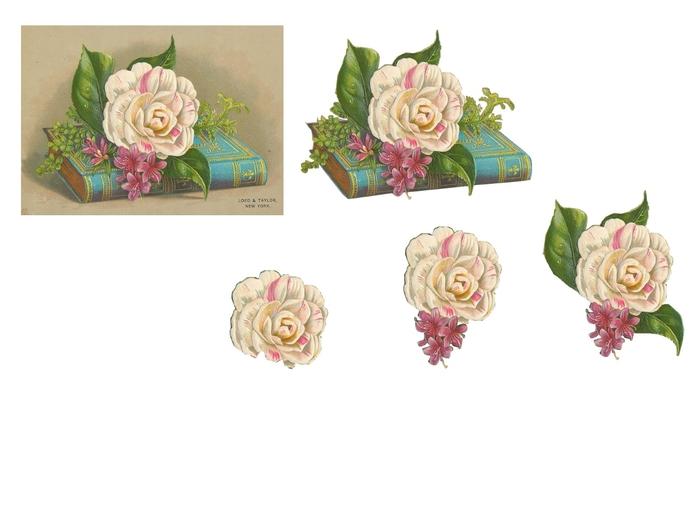 fleur sur livre (700x525, 122Kb)