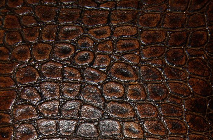 Reptile skin textures (6) (700x459, 622Kb)