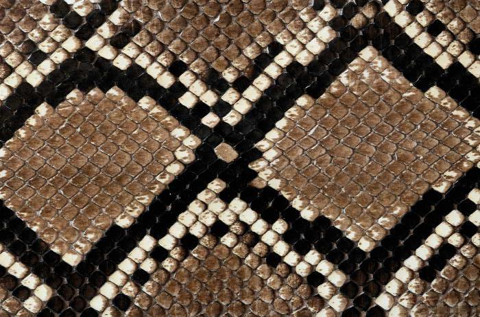 Reptile skin textures (18) (700x462, 97Kb)