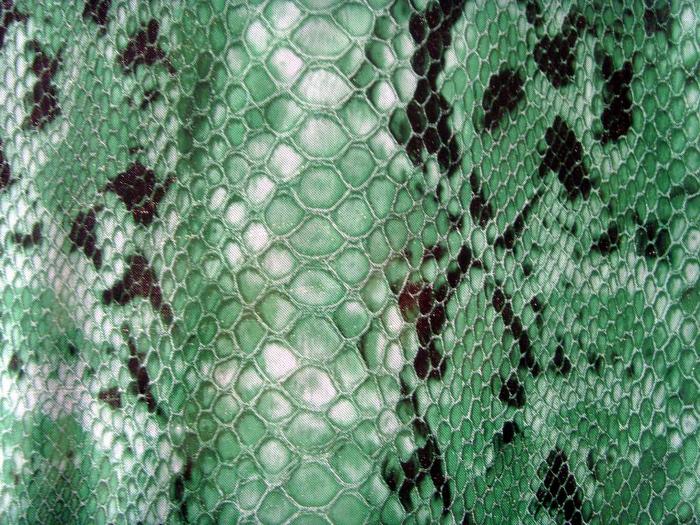 Reptile skin textures (27) (700x525, 565Kb)