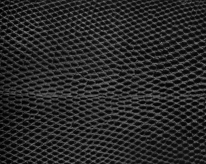 Reptile skin textures (29) (700x560, 339Kb)