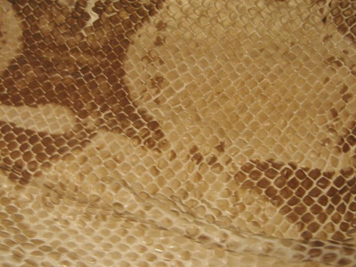 Reptile skin textures (31) (700x525, 310Kb)