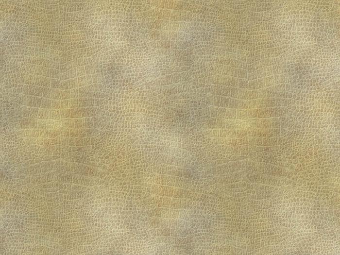 Reptile skin textures (41) (700x525, 302Kb)