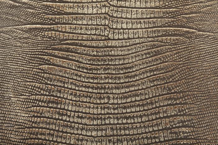 Reptile skin textures (52) (700x467, 562Kb)