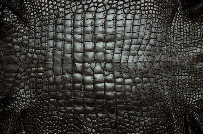 Reptile skin textures (58) (700x464, 543Kb)