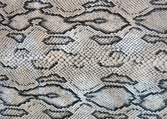 Reptile skin textures (62) (700x502, 642Kb)