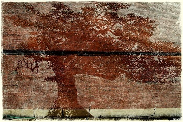 4195696_Oak_Tree_Mural_01 (700x467, 224Kb)