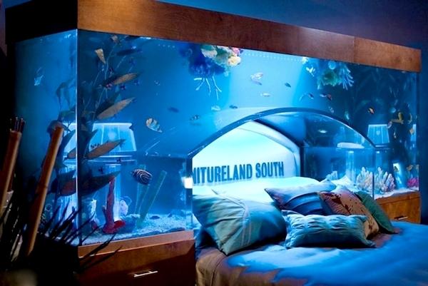 3925073_aquarium_bedroom_03 (600x401, 186Kb)