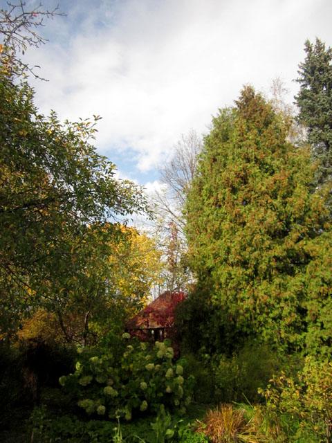 Сад Паустовского 6 (480x640, 143Kb)